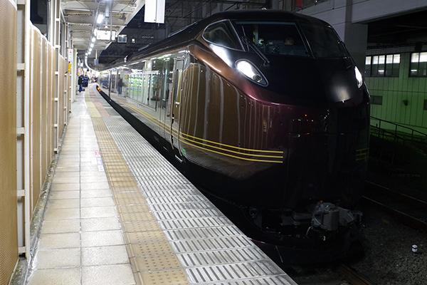 E655系「和(なごみ)」回9462M 団臨 立川駅3番線
